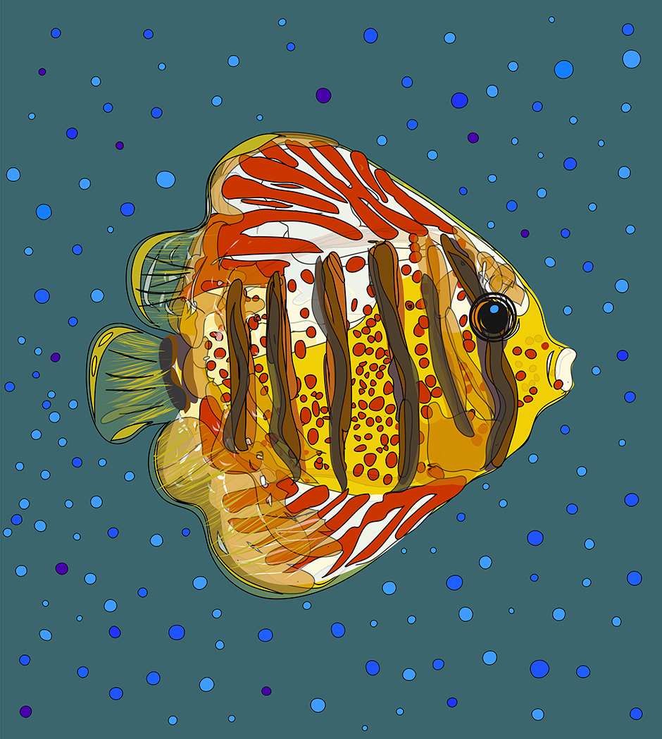 Tropical fish - Drawing23rdsept16